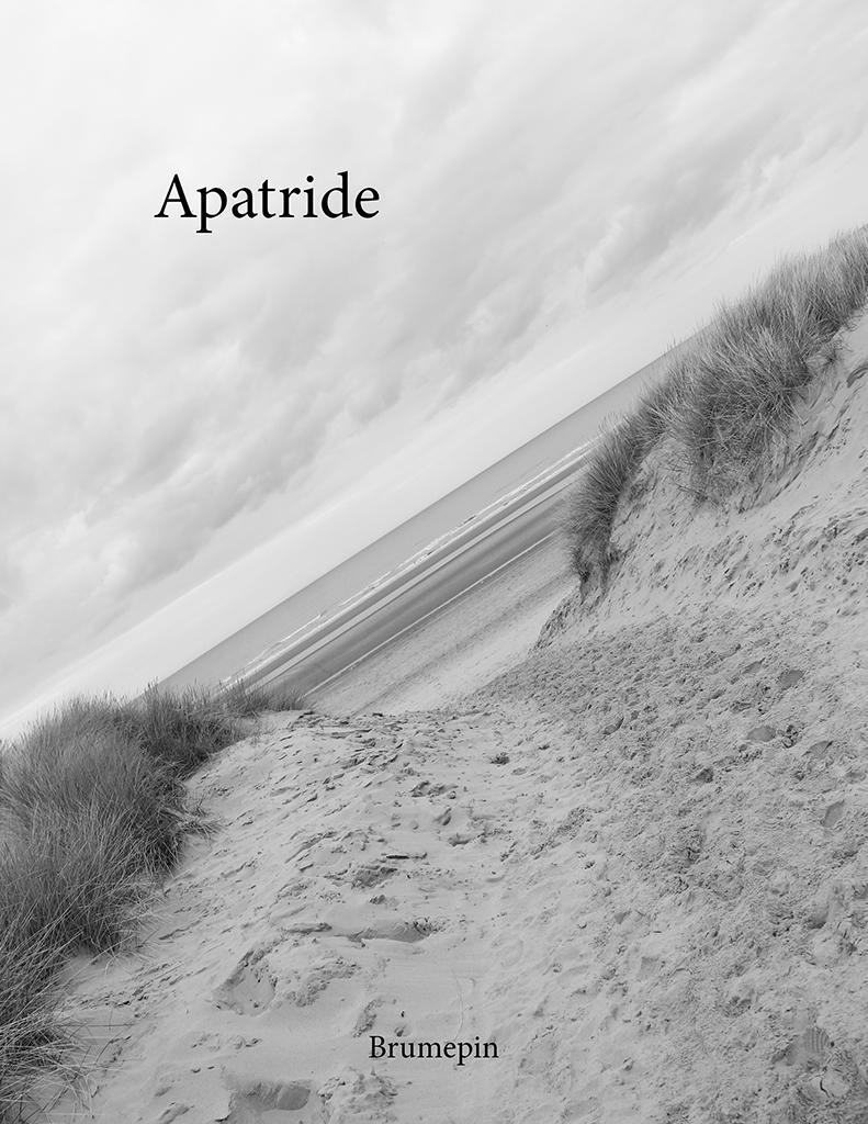 Couverture de 'Apatride'