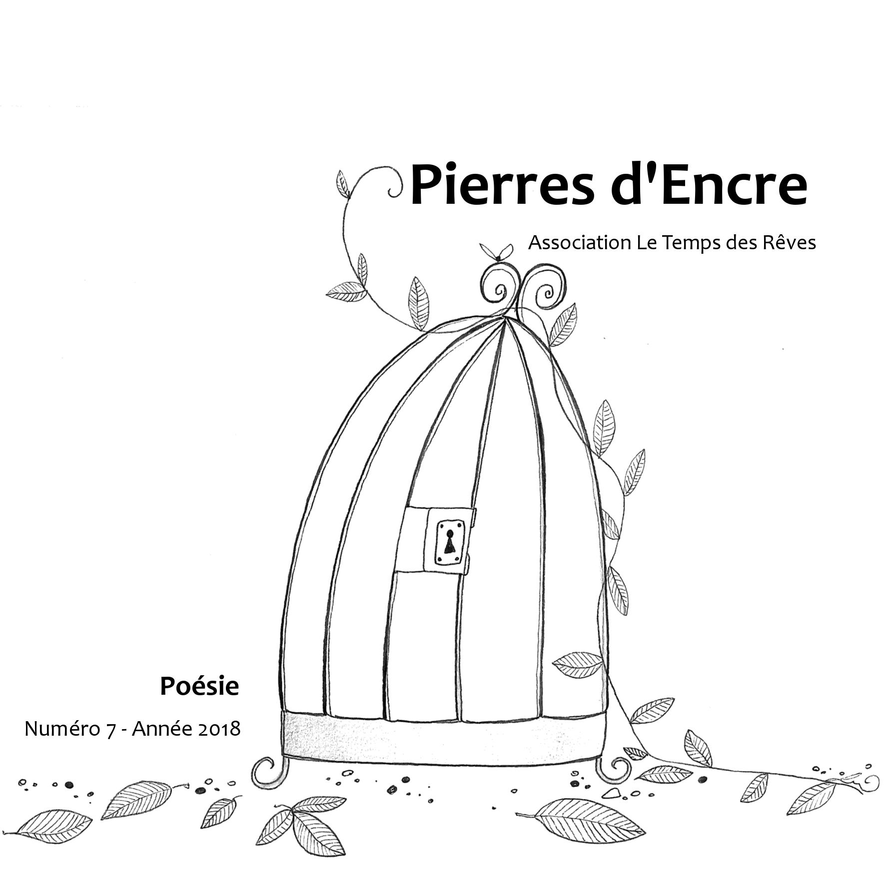 Couverture de 'Pierres d'Encre n°7'
